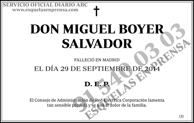 Miguel Boyer Salvador